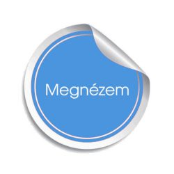 Autós műszerfal LED izzó, B8.4D Kék