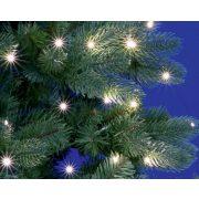 Karácsonyi kültéri micro LED égősor 10 ágú csokor Fényfüzér ML250GWH